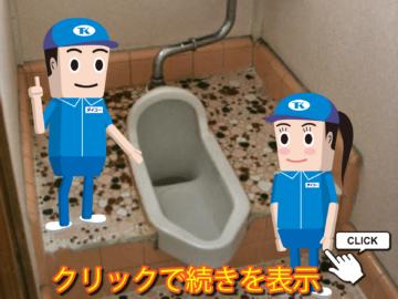 和式トイレは不要?~和式トイレの歴史・用途におけるメリットとデメリット・リフォームの注意点をご紹介~の画像