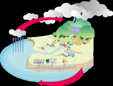水の循環の図