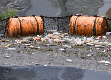 環境汚染の写真